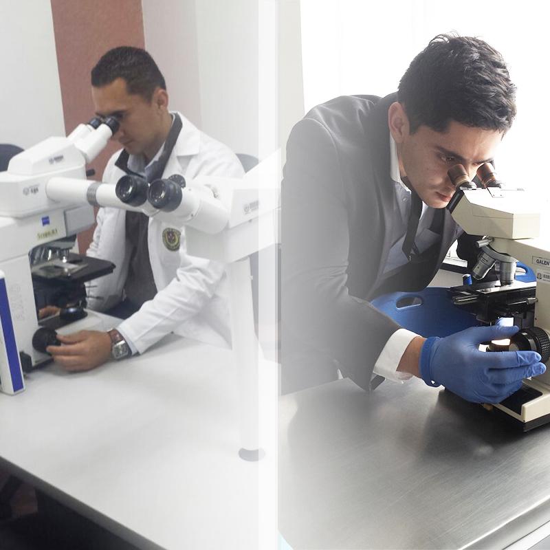 Desarrollo y ciencia